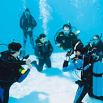 PADI Professional Courses - Dive Pool